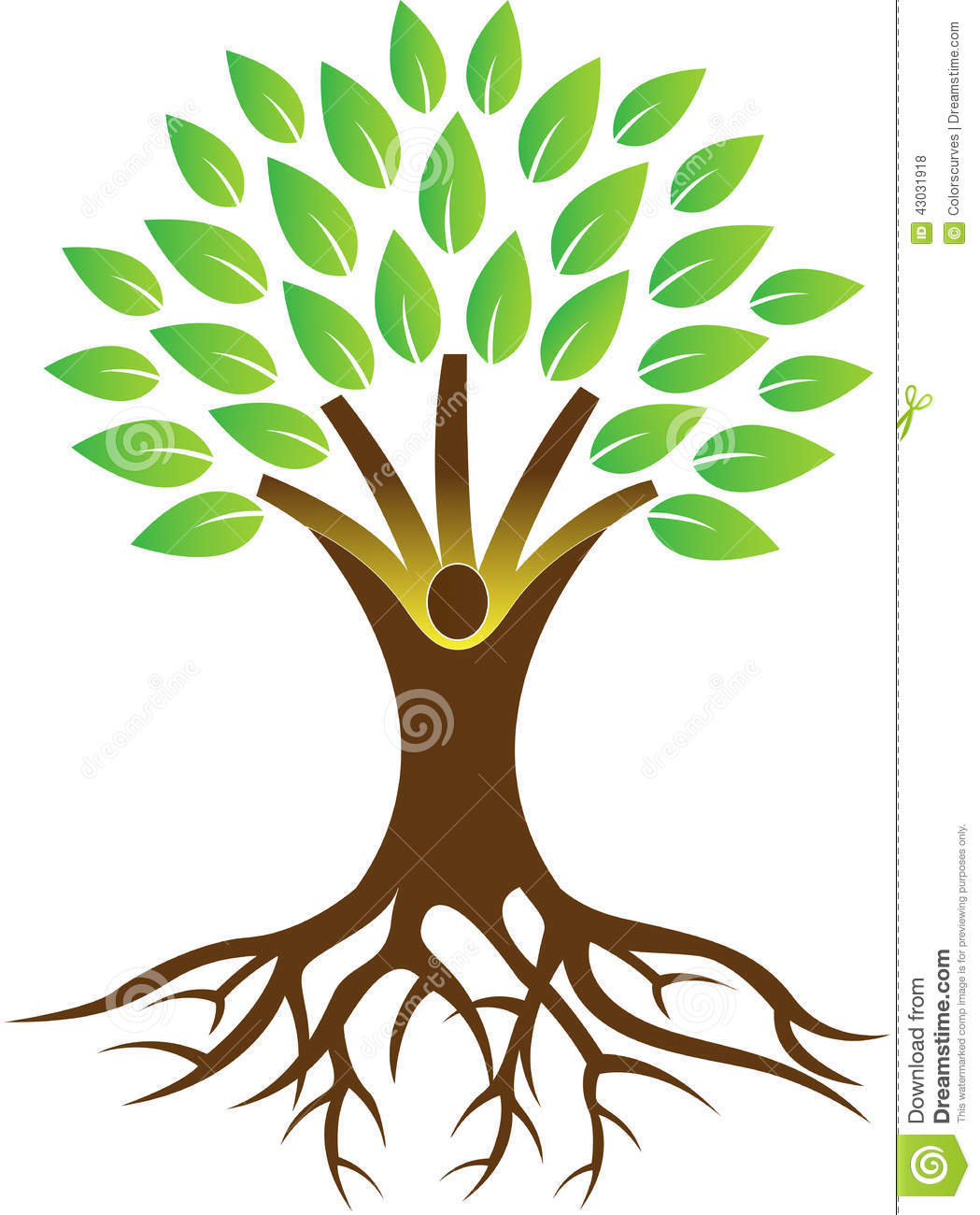 1049x1300 Tree With Roots Drawing Vector Office Ideas