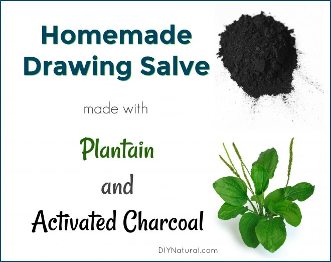 660x522 Homemade Drawing Salve An Activated Charcoal And Plantain Salve