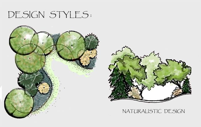 700x445 Drawing Of A Naturalistic Style Planting Plan And Section