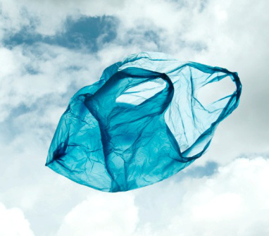 382x335 Bangladesh World Leader In Banning The Plastic Bag Greenpage