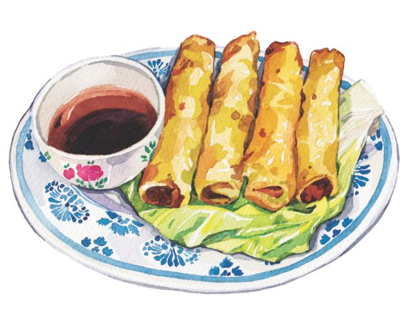 600x466 Spring Rolls Illustration Soy Sauce On A Plate Illus Food
