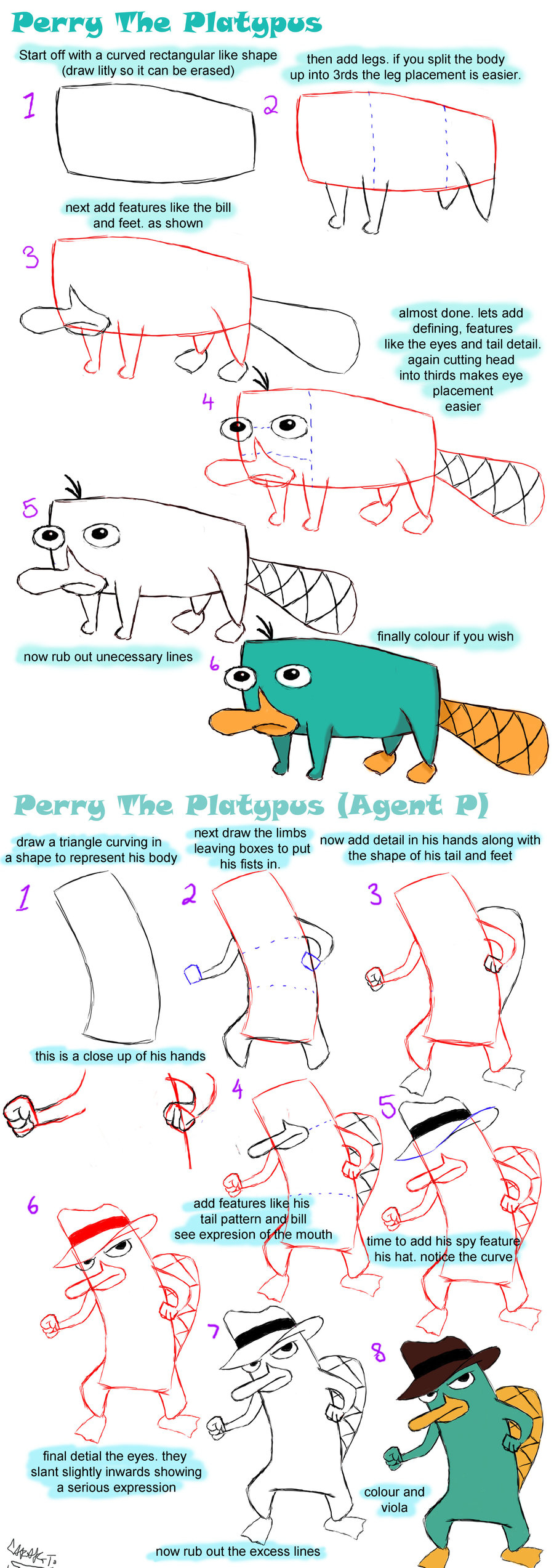 900x2546 How To Draw Perry Platypus Step By Step How To Draw Perry