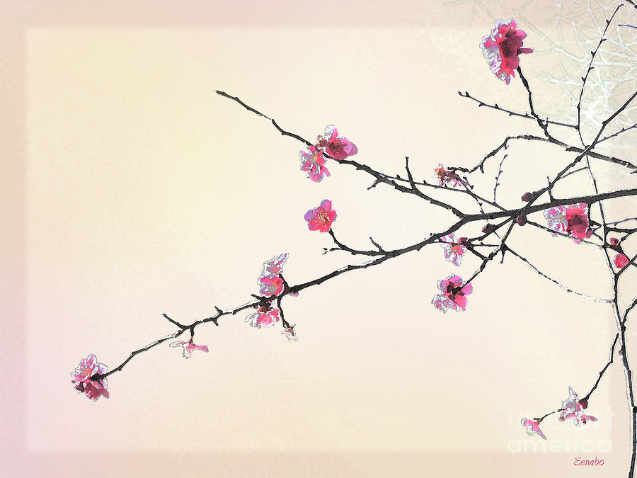 900x675 Plum Blossom Photograph By Eena Bo