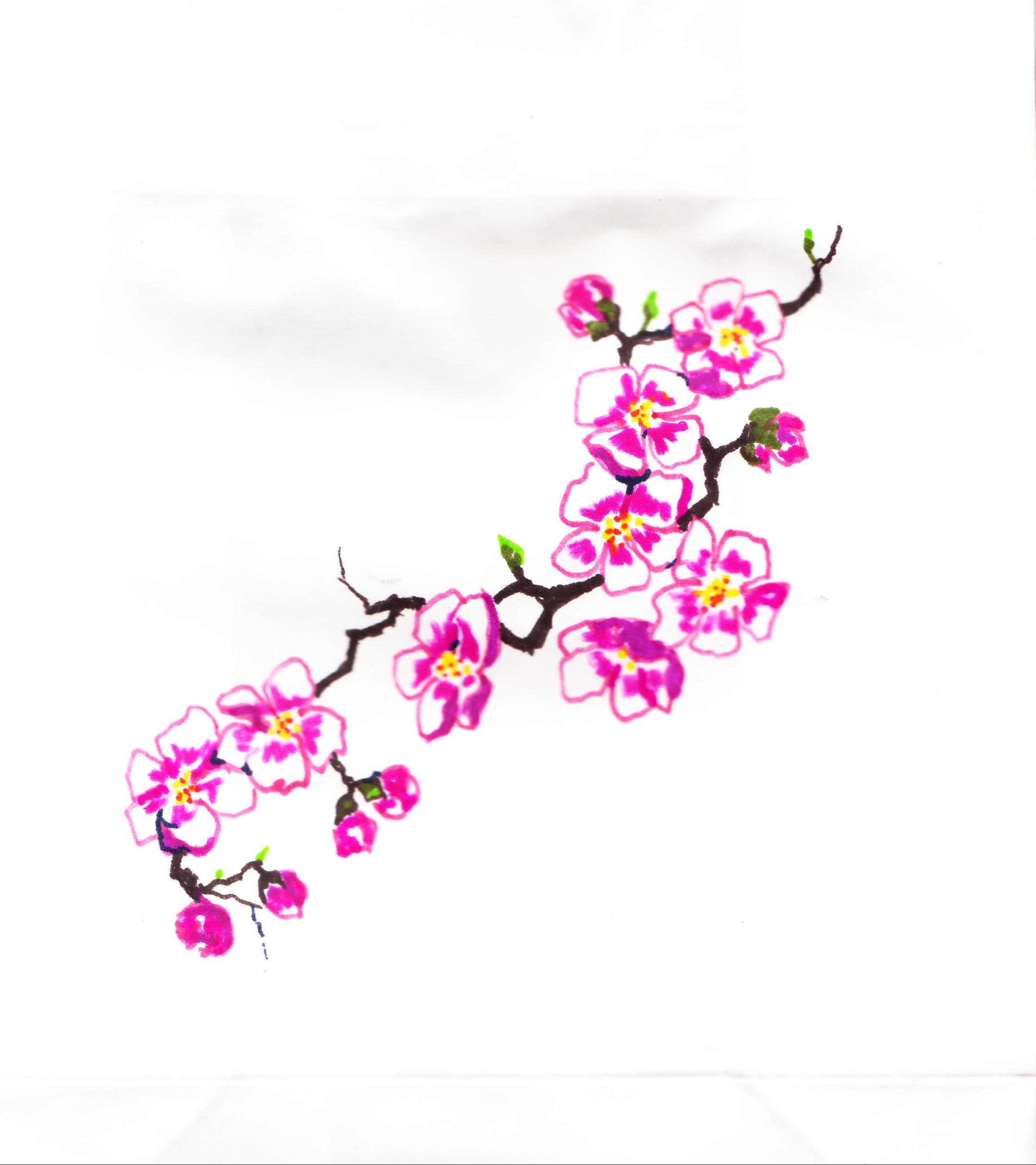 2240x2519 Plum Blossom Linda Halcomb's Blog