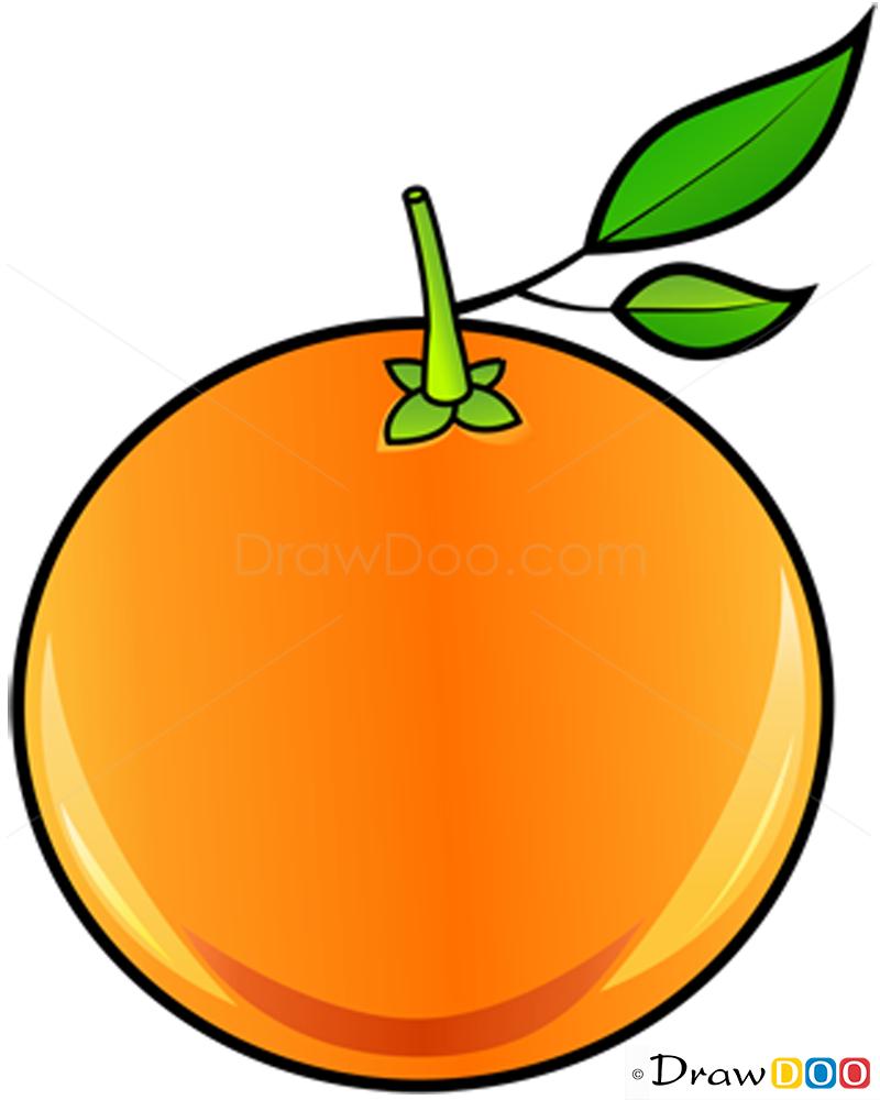 800x1000 How To Draw Orange, Fruits