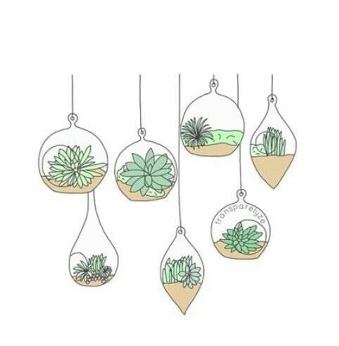 482x493 Drawing, Not Mine, Plant, Plants, Png