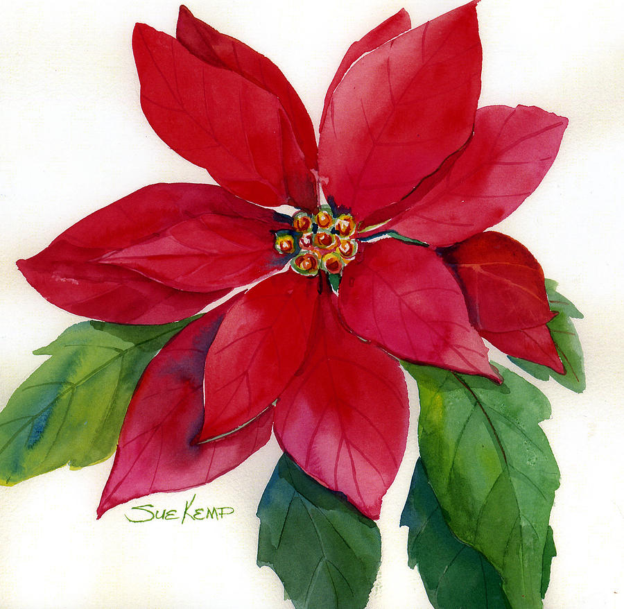 900x878 Christmas Poinsettia Painting By Sue Kemp