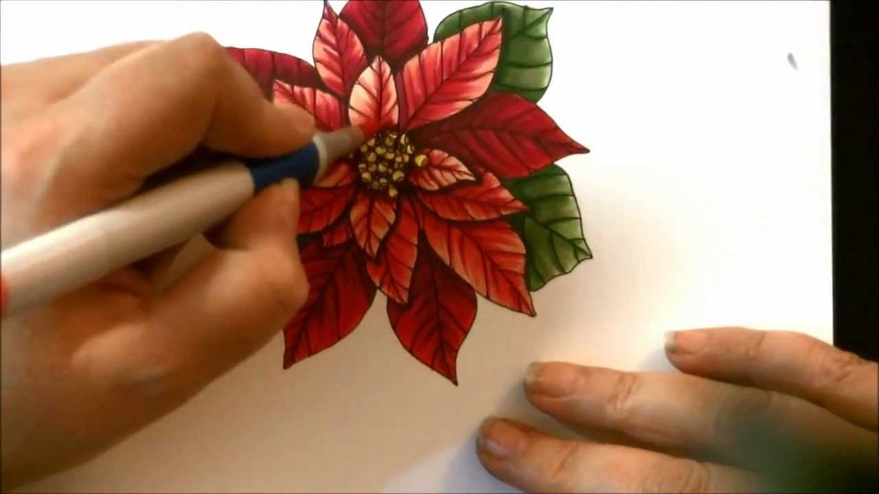 1280x720 Poinsettia Drawing And Copics