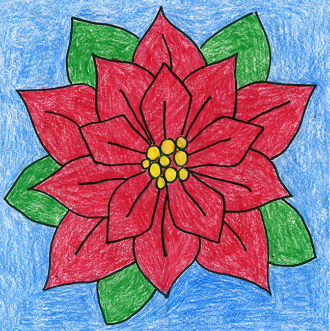 648x650 Poinsettia Drawing For The Holidays