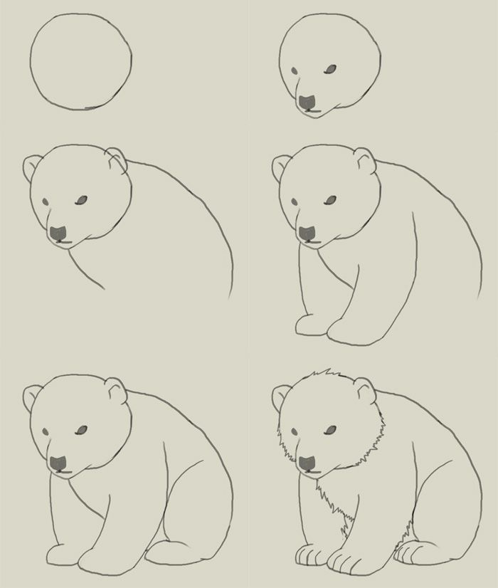 700x826 Pin By Izabela Karbowska On 1 Polar Bear Drawing