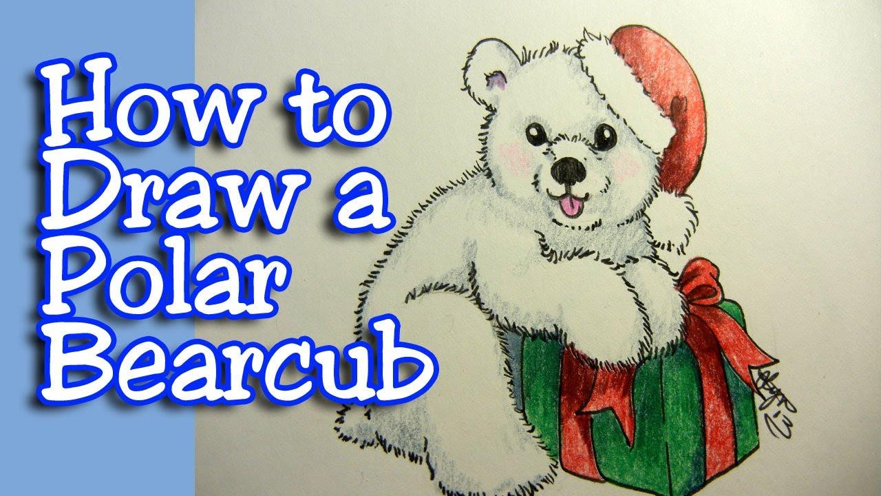 1280x720 How To Draw A Polar Bearcub