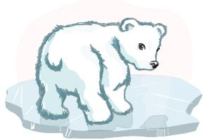 300x200 Cute Polar Bear Drawing