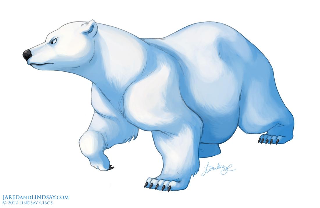 1100x717 Drawing A Polar Bear How To Draw A Polar Bear Last