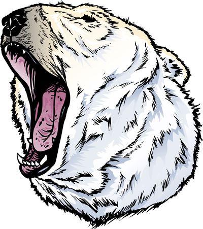 400x451 Polar Bear Dungeons And Dragons Wiki Fandom Powered By Wikia
