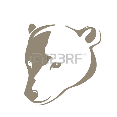 450x450 Polar Bear Head Stock Photos. Royalty Free Business Images