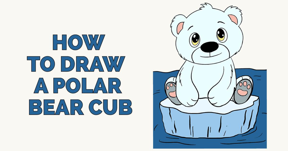 1200x628 How To Draw A Polar Bear Cub In A Few Easy Steps Easydrawingguides