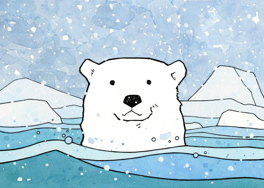 900x641 Illustrated Polar Bear Facts For Kids
