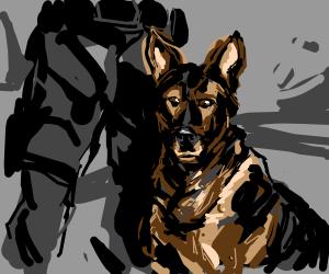 300x250 K9 Police Dog! (The Best Boy.)