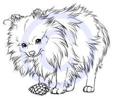 234x200 Pencil Drawings Pomeranian Dog Pencil Drawing Art Print Signed