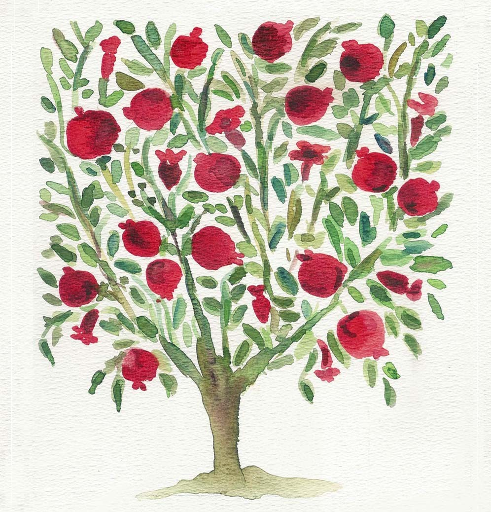 Pomegranate Tree Drawing at GetDrawings.com | Free for personal use ...