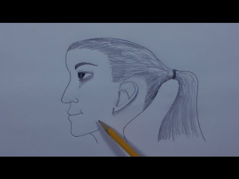 480x360 How To Draw A Ponytail Hair