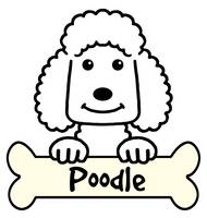190x200 Drawing Poodle Artwork For Sale On Fine Art Prints