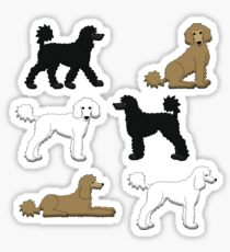 210x230 Poodle Drawing Gifts Amp Merchandise Redbubble