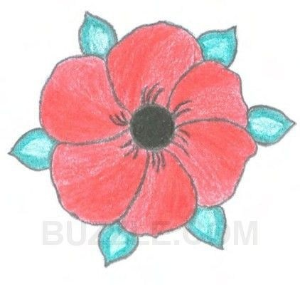 Poppy drawing at getdrawings free for personal use poppy 422x400 how to draw a poppy flower awesome drawn poppy real flower pencil mightylinksfo Images