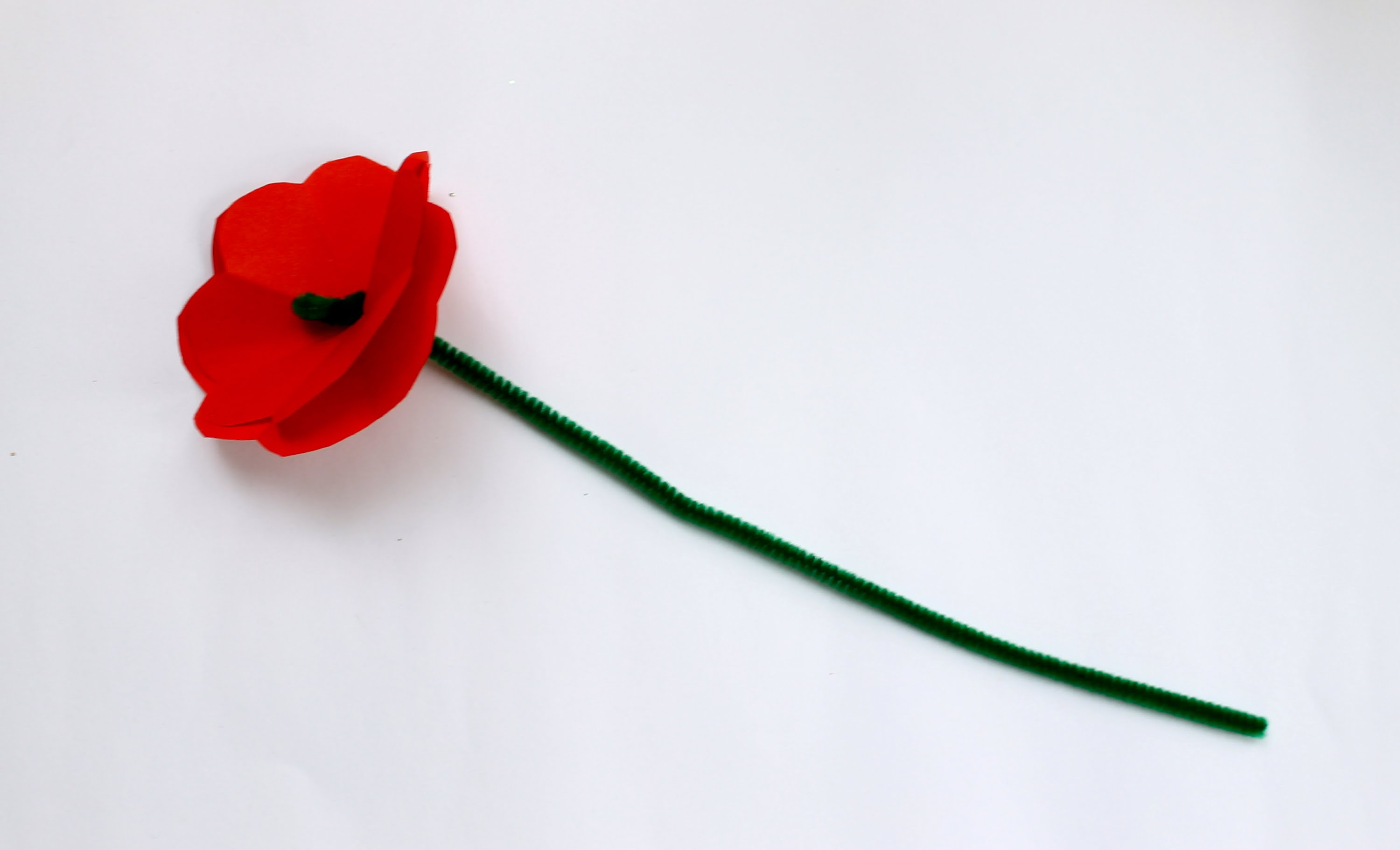 3000x1821 How To Make An Anzac Day Memorial Poppy