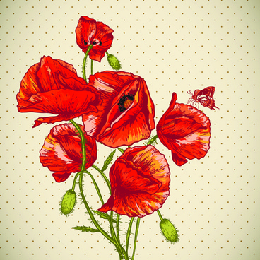 368x368 Red Poppy Drawing Free Vector Download (94,375 Free Vector)