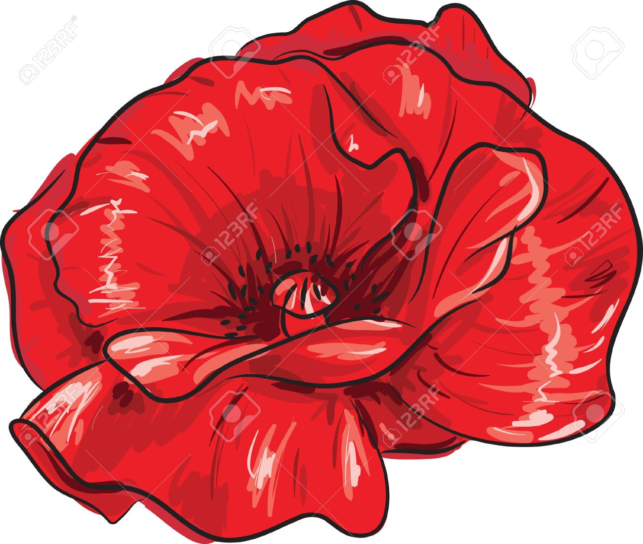 Poppy flower drawing at getdrawings free for personal use 1300x1099 red poppy flower mightylinksfo Image collections