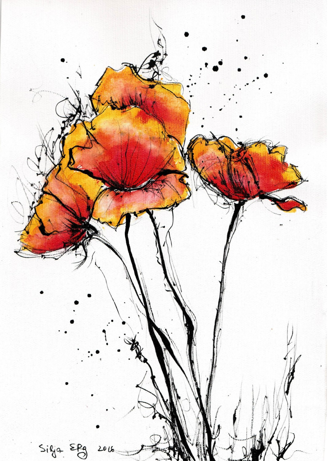 Poppy Flowers Drawing At Getdrawings Free For Personal Use