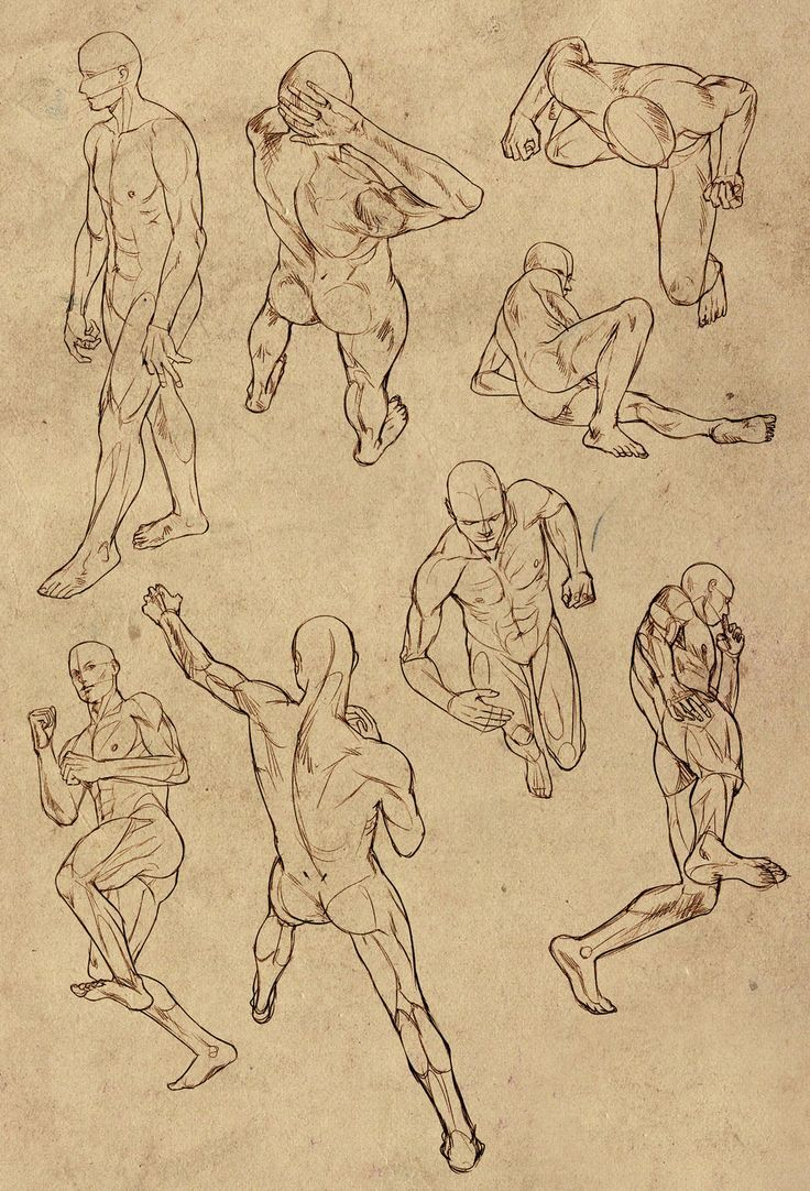 Poses Male Drawing At Getdrawings Free For Personal Use Poses