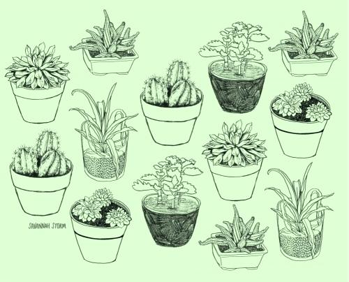 500x404 Potted Plant Drawings Potted Plant Growing Drawing Potted Plant