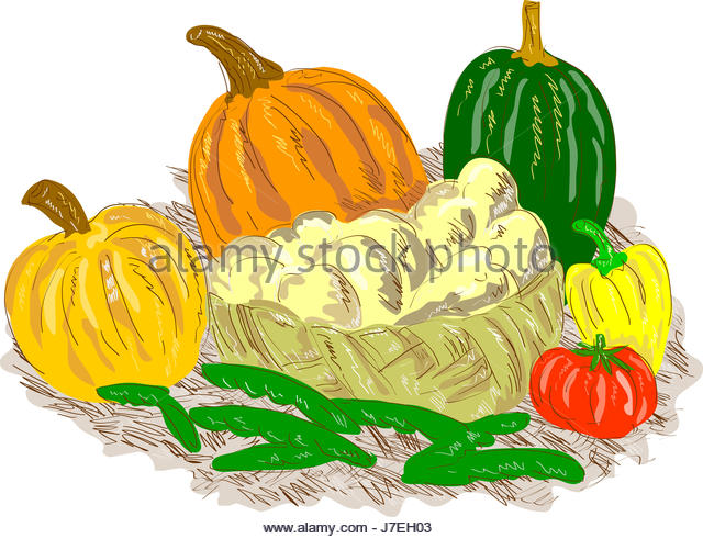 640x491 Potato Drawing Stock Photos Amp Potato Drawing Stock Images