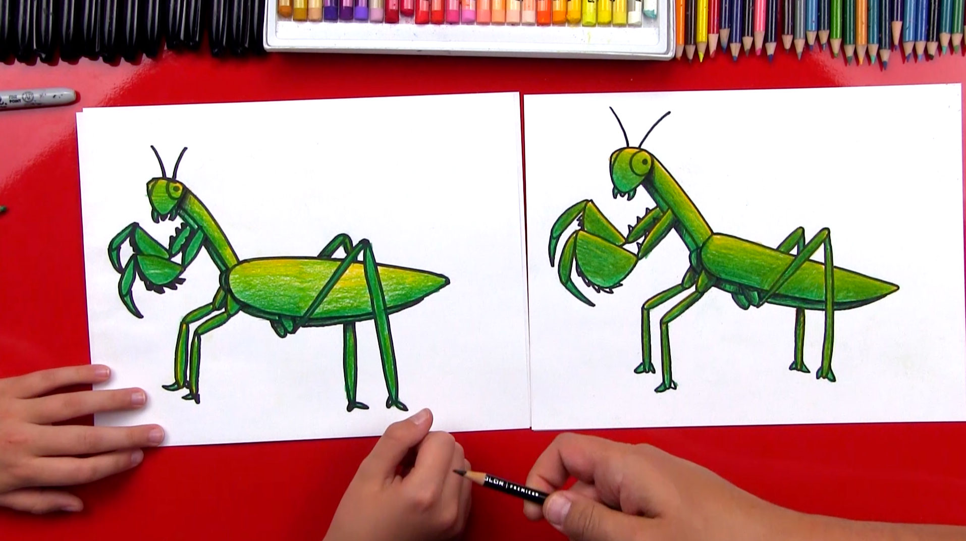 1914x1072 How To Draw A Praying Mantis