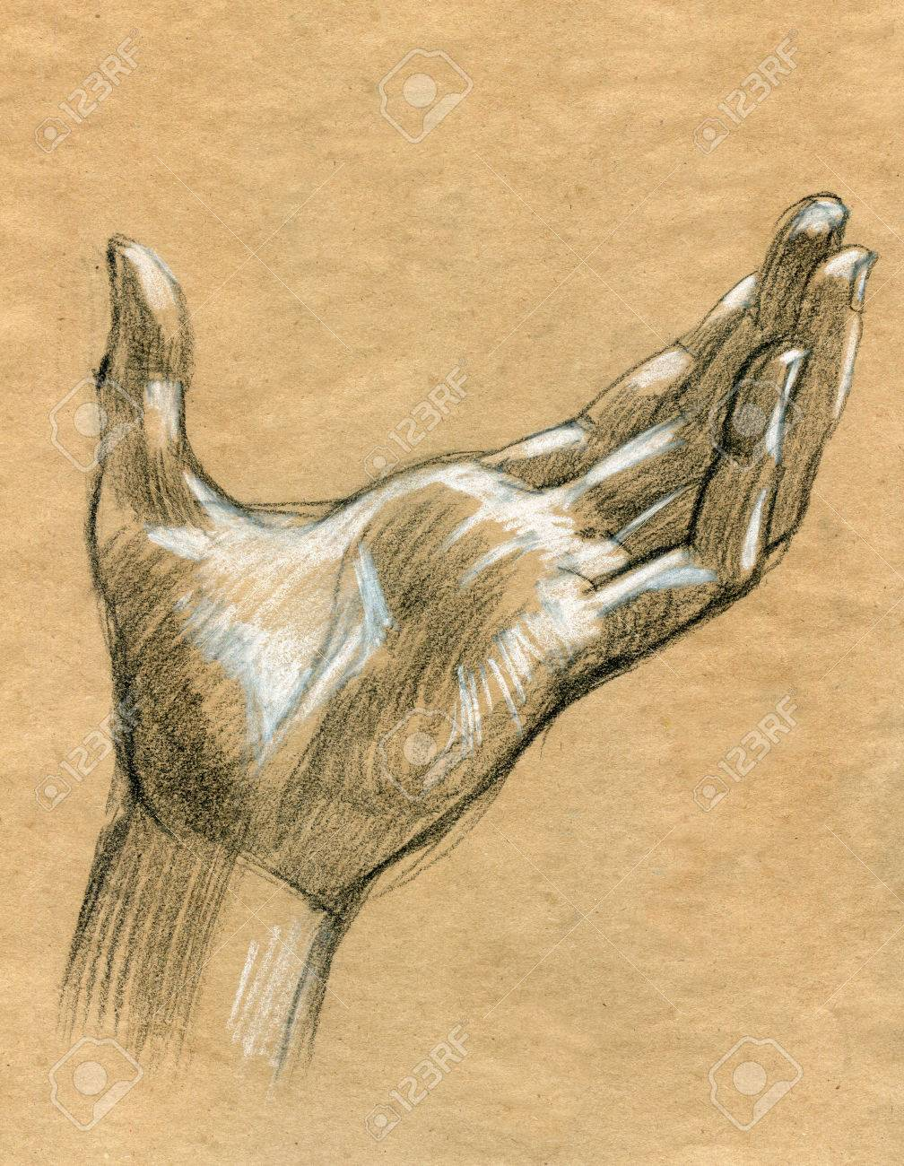 1008x1300 Praying Hands Drawing Illustration Realistic Sketch Stock Photo