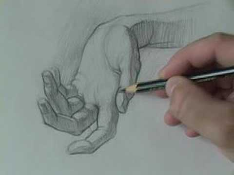 480x360 drawing tutorials how to draw the hand