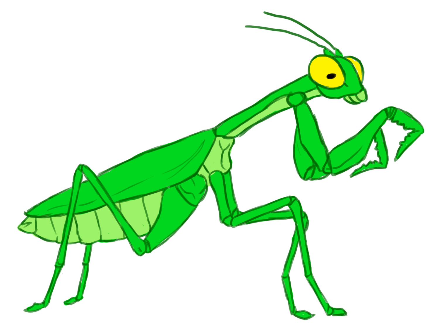 1500x1125 How To Draw A Praying Mantis 12 Steps (With Pictures)