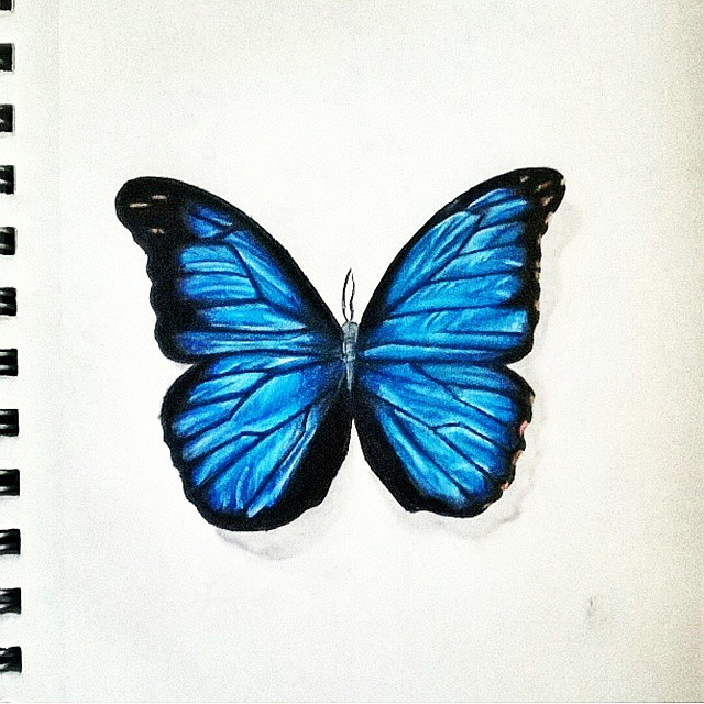Pretty Butterfly Drawing At Getdrawings Com