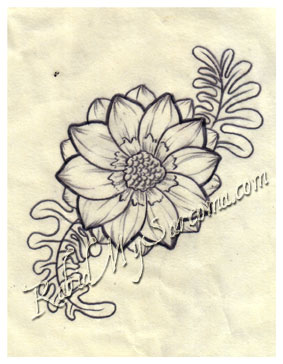 283x364 Tatto Flower Drawings Flower Line Drawing By