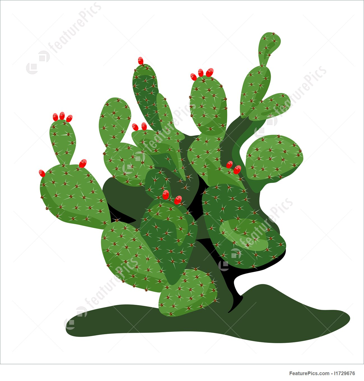 1300x1360 Prickly Pear Cactus Illustration