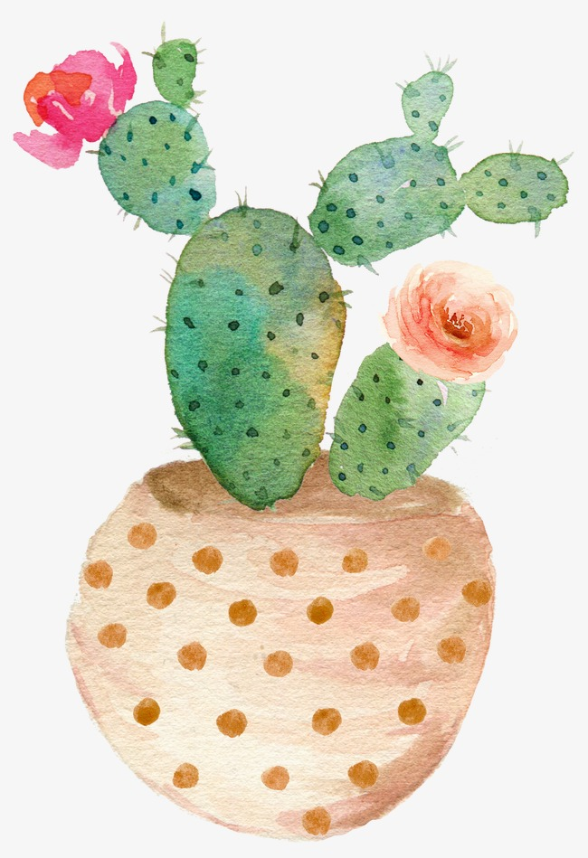 650x949 Drawing Potted Cactus Bloom, Green Prickly Pear Cactus Bloom