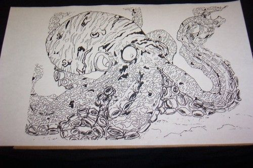 500x333 Pencil, Pen Drawing, Art ,limited Edition Octopus Signed Print Out