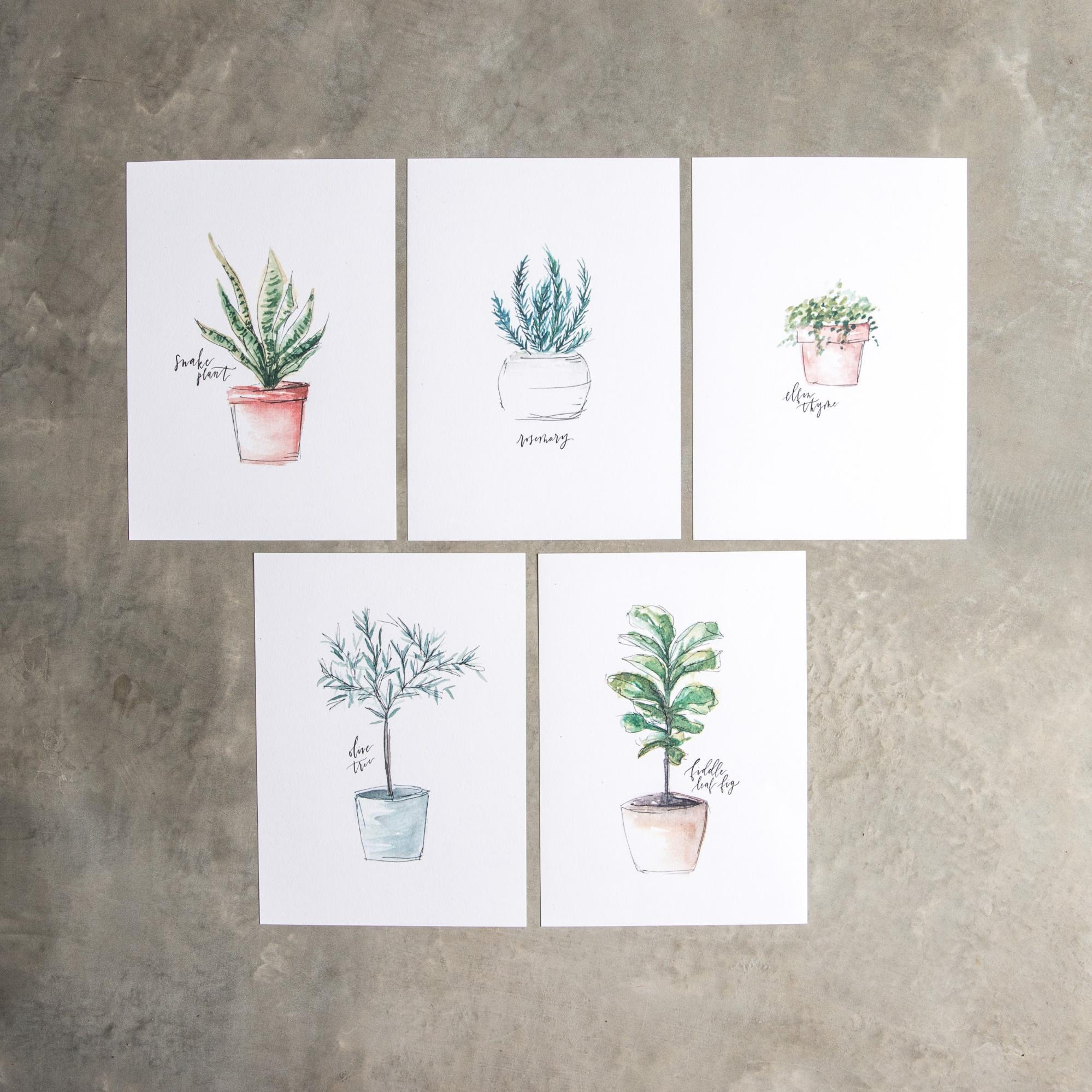 1999x1999 Plant Illustration Printable