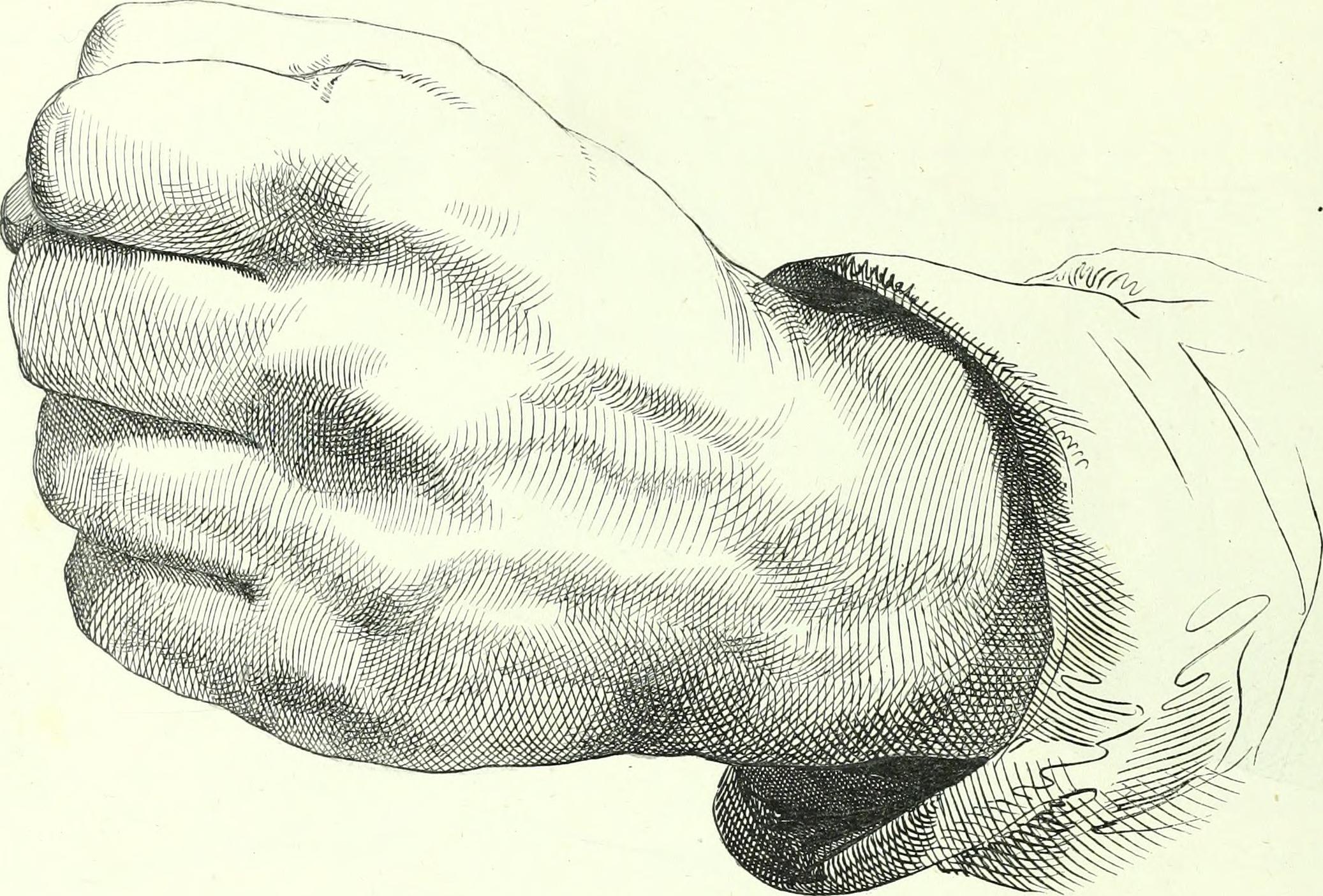 2074x1406 Filethe American Drawing Book