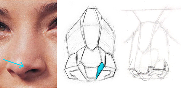 600x294 How To Draw A Nose Step By Step Proko