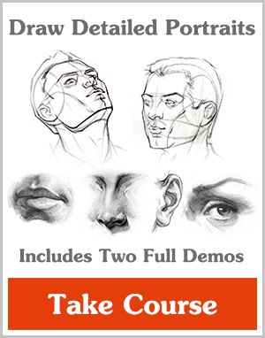 300x382 How To Draw The Head Front View Proko