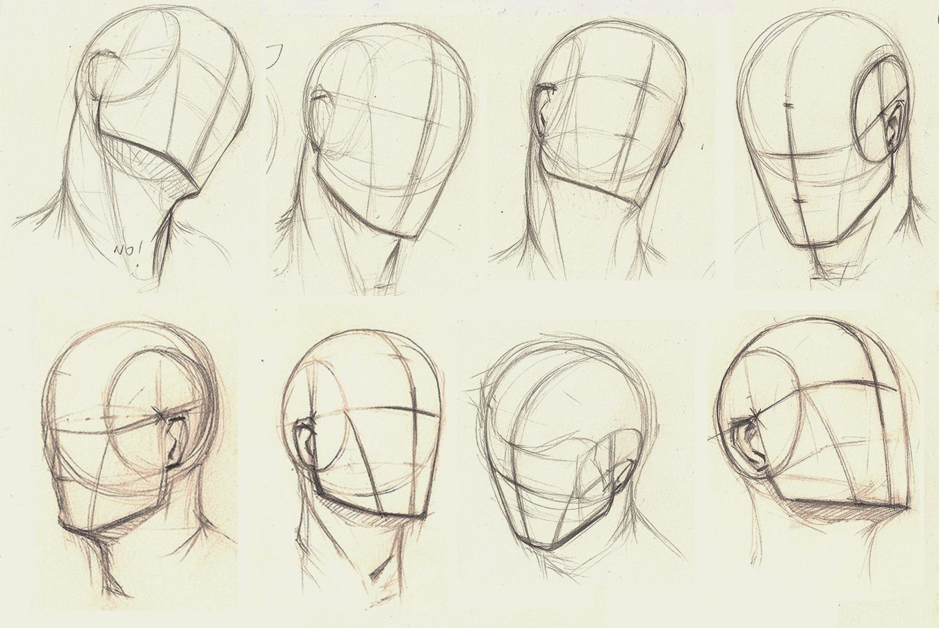 Line Drawing Head : Proko head drawing at getdrawings free for personal
