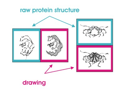 402x293 Do You Want To See A Drawing Of Your Favorite Protein Protein Art